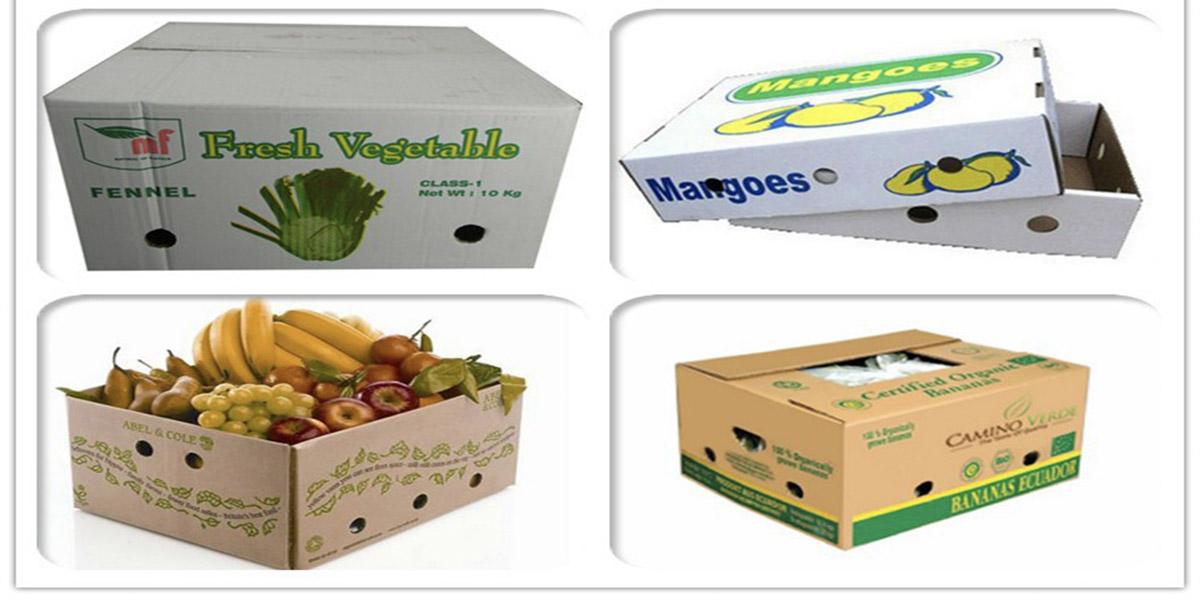 Đặc điểm của hộp đựng trái cây