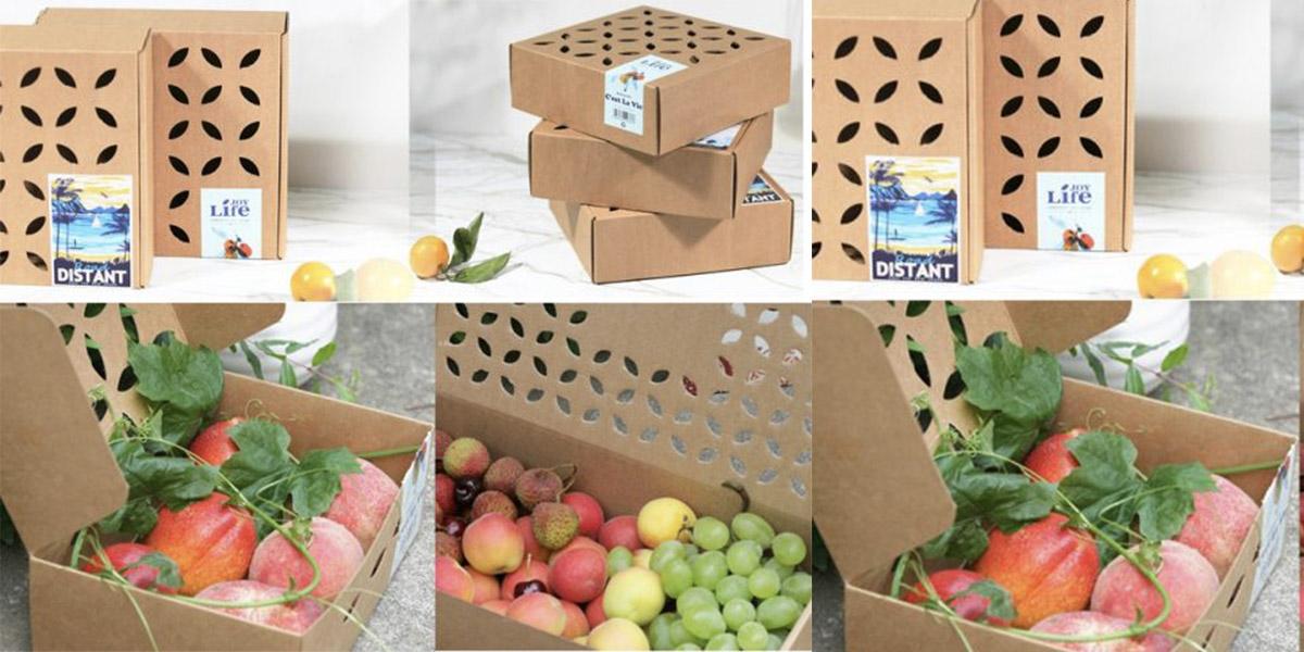 Các loại hộp đựng trái cây