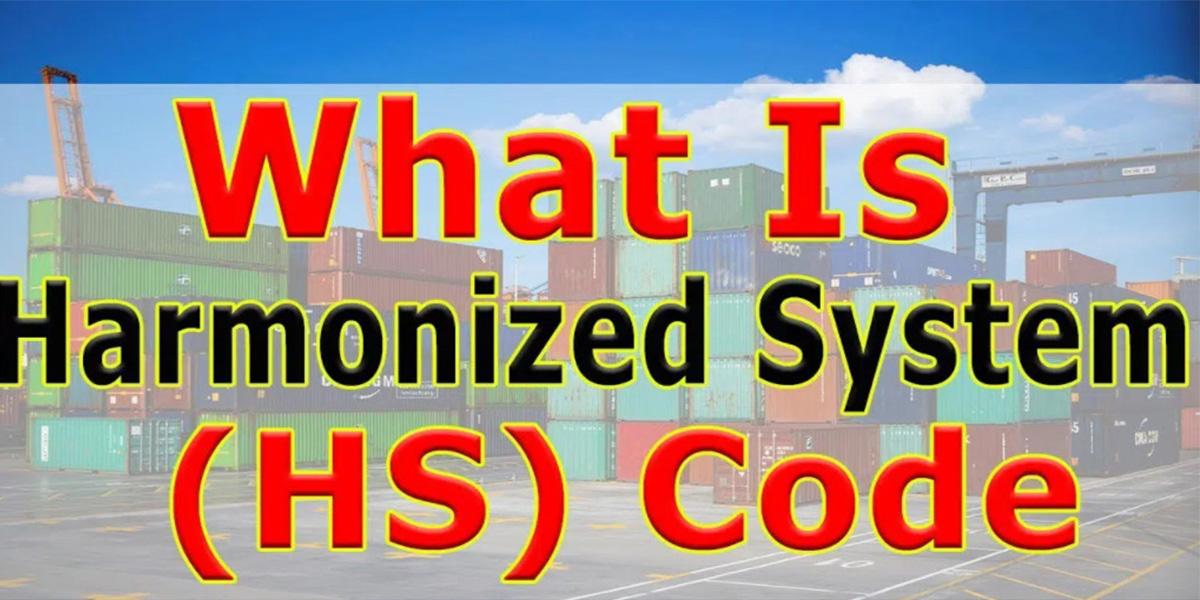 Hướng dẫn cách tra cứu mã HS Code chính xác